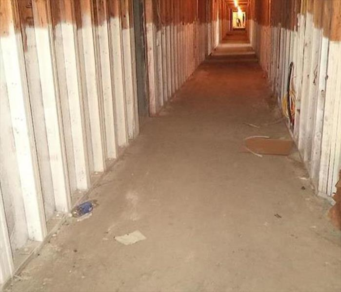 Central City Phoenix Mold Remediation