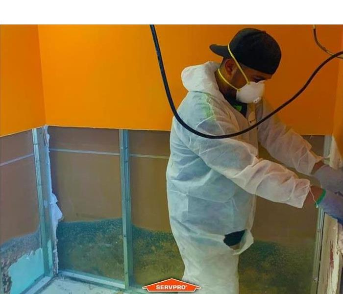 SERVPRO professionals can assist in mold remediation if you experience mold growth in your home, as seen in this picture.