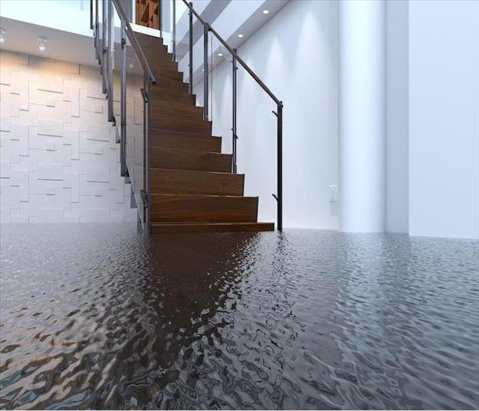 Why SERVPRO The Real Truth About How the Latest Tools can Help to Overcome Phoenix Water Damage